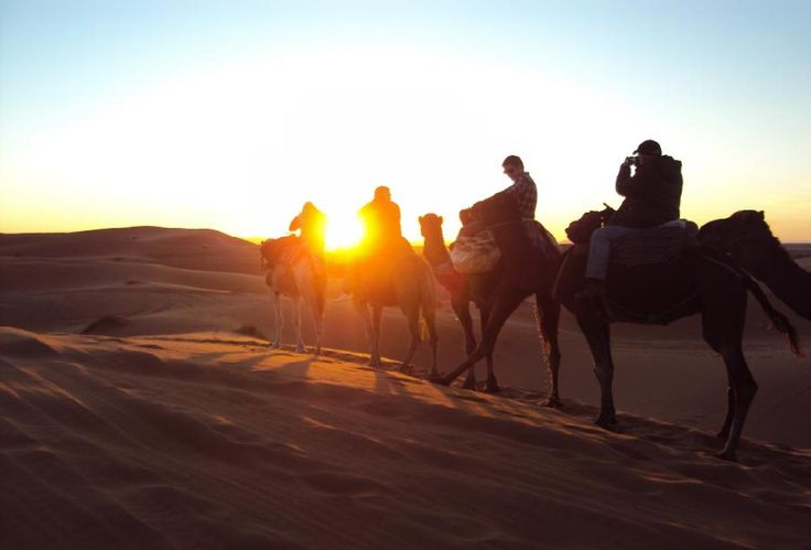#SaharaDesert is the largest hot desert in the world where you can find 70 types of animal species. #Sunrise and #Sunset is the most amazing part of it. http://www.tizitrekking.com/