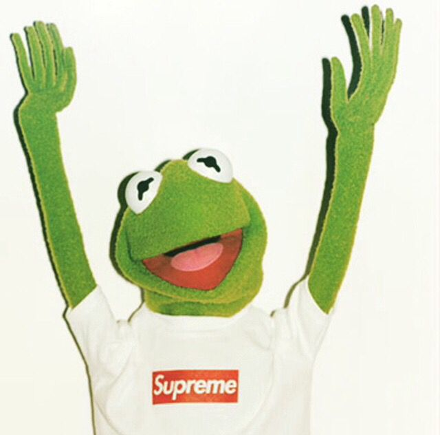 349 Best Images About Kermit The Frog