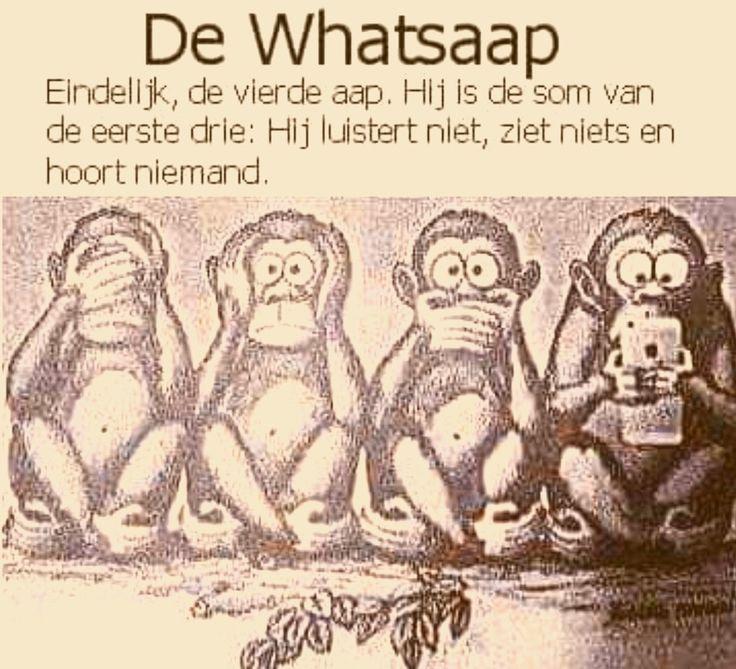 Whatsaap...