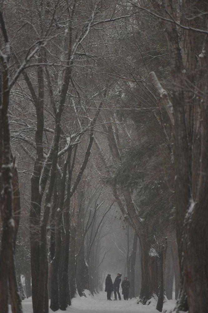 Bishkek. Kyrgyzstan. Bishkek Winter. Snow. Бишкек. Кыргызстан. кыш. каар.