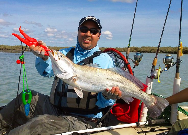 Fish pics 10 handpicked ideas to discover in animals and for Kayak fishing galveston
