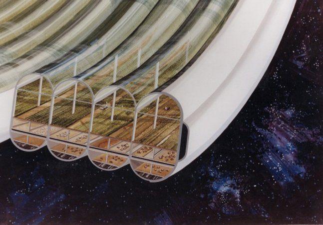 AEstação Espacial Internacional (NASA) criou um laboratório espacial que orbita a cerca de 340 km da Terra, onde cientistas e engenheiros fazem descobertas e experimentos verdadeiramente relevantes e inovadores. Mas, para isso, cada membro da equipe precisa de 30 kg de água, comida e ar diários para sobreviver. Isso implica carregar naves com toneladas de mantimentos, o que gera um custo enorme às viagens espaciais. Mas e se os alimentos e o oxigênio pudessem ser gerados na própria Estação…