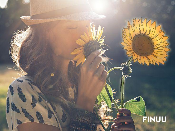 Słonecznik to jeden z najpiękniejszych kwiatów, który kwitnie w Finlandii do września, a w Polsce nawet o miesiąc dłużej! #finuu #finuupl #finlandia #finland #kwiaty #slonecznik #flowers #sunflower #summer #lato #inspiracje #tapeta