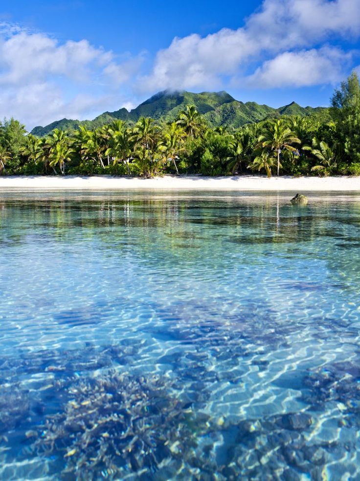 Landscape of the Cook Islands.
