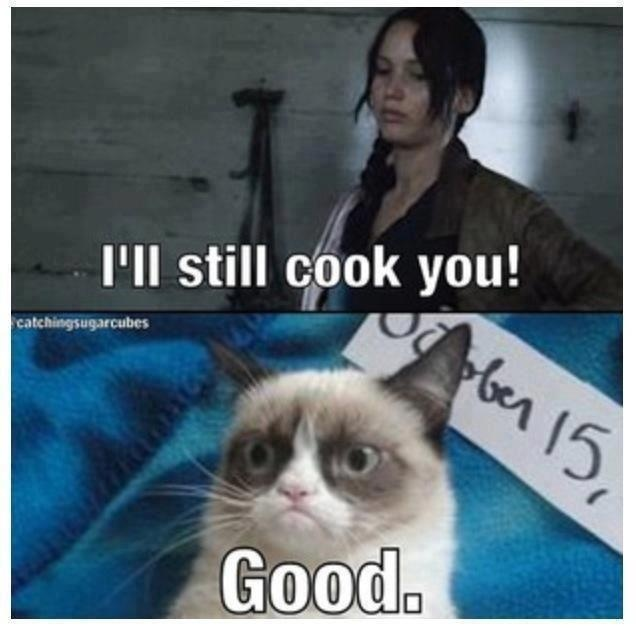 Hunger Games with Grumpy Cat!