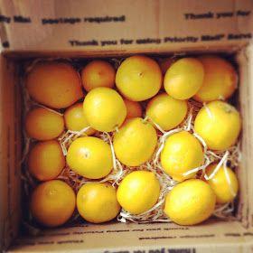 On a Whim: lemons!