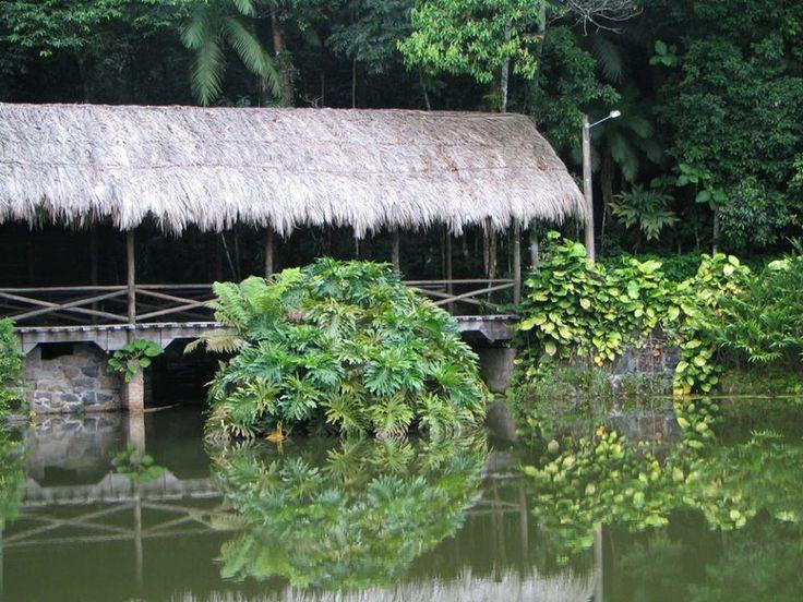 A Ponte Coberta Típica, com sua cobertura de palha e estrutura de madeira, lembra as primeiras pontes construídas na cidade de Jaraguá do Sul, cidade da Malwee.