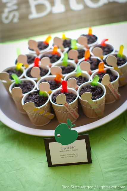 """My grandchildren love dirt ( chocolate pudding topped with finely crushed Oreo cookies. Add gummy worms so they stick out of the """"dirt"""". What little boy or girl wouldn't love this treat."""