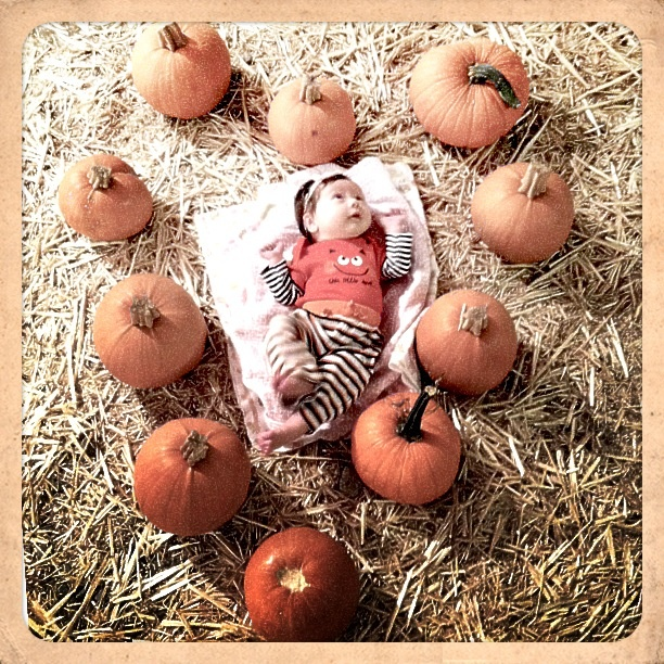 A little photography fun at the pumpkin patch!