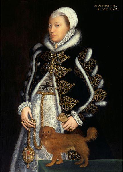 Lady Catherine Carey daughter of Henry VIII? and Mary Boleyn,1562 Steven van der Maulen.   My 12th great grandmother. Binary 111100000000011.