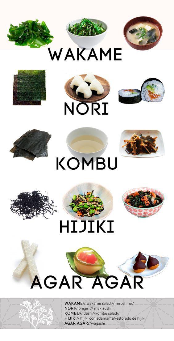 Variedad y tipos de algas marinas comestibles