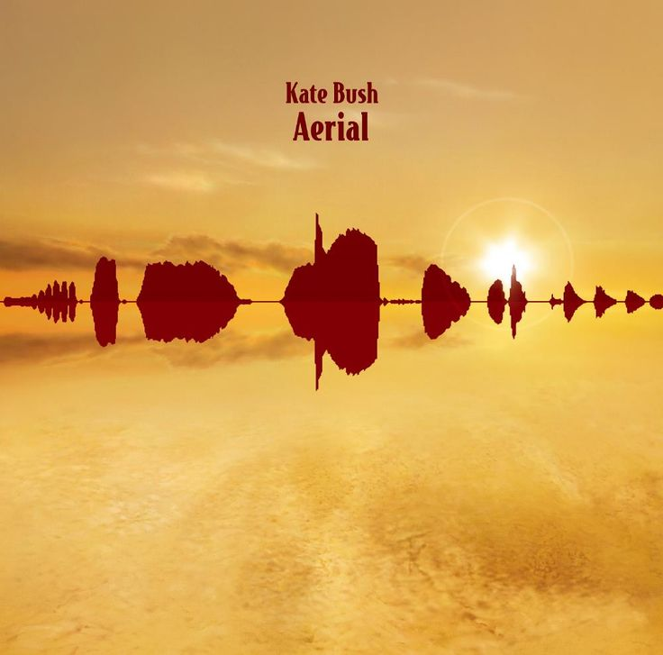 Kate Bush Aerial album cover