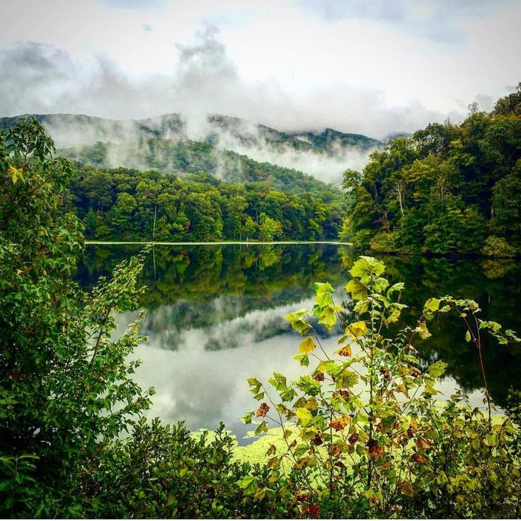 153 Best Kentucky Unbridled Adventure Images On Pinterest