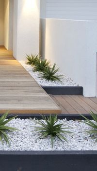13+ Unutterable Backyard Garden Vegetable Companion Planting Ideas – Amr