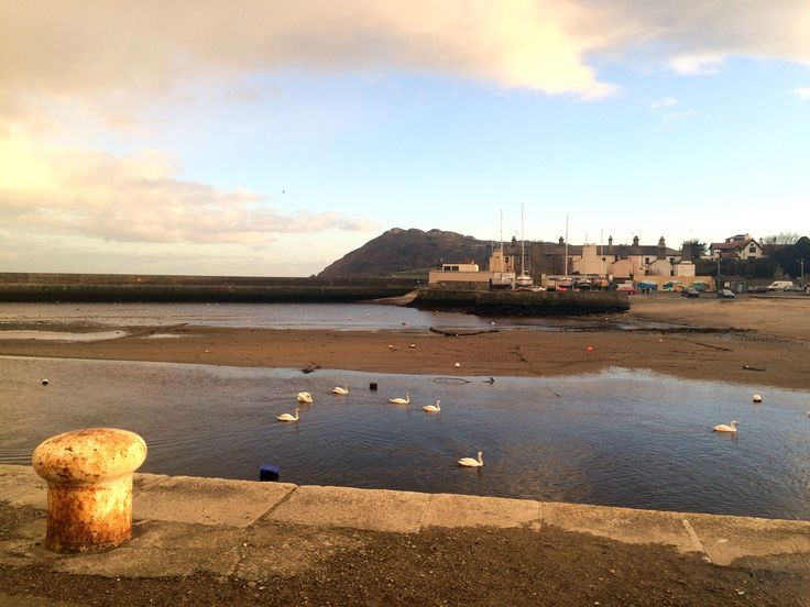 Bray Harbour at low tide
