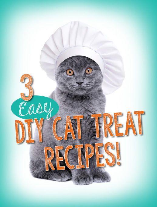 3 Easy DIY Cat Treat Recipes | eBay