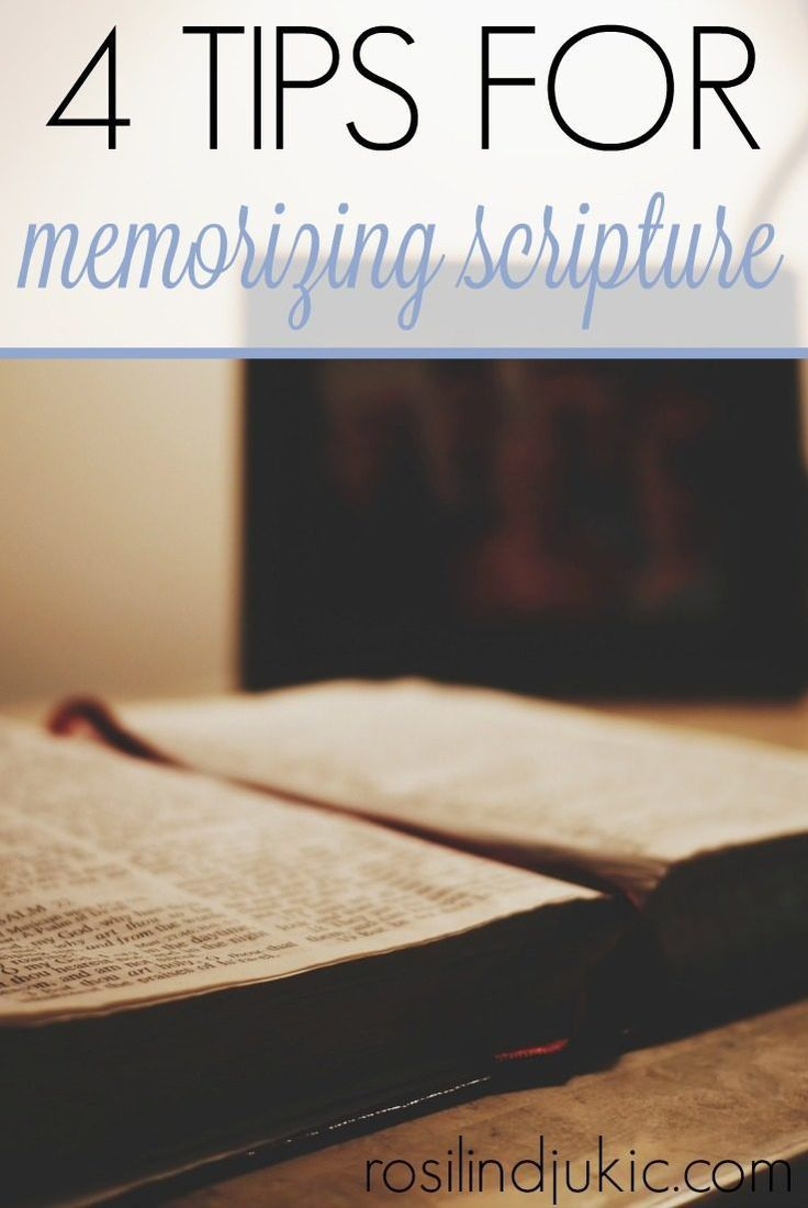 Memorization Study Bible, The Paperback - amazon.com