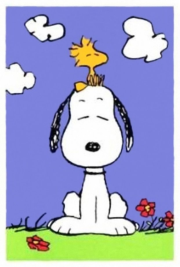 Snoopy & Woodstock                                                                                                                                                      More