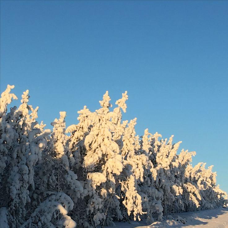 Winter wonderland at McArthur River