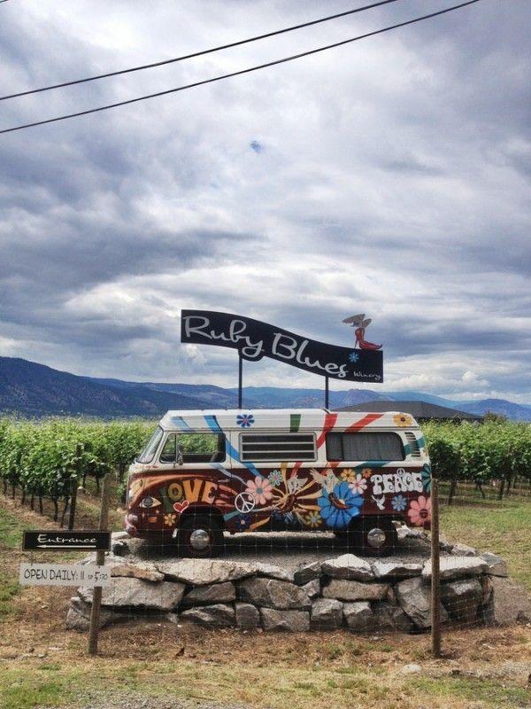 VW Bulli at Ruby Blues Winery, Penticton / Naramata, BC, Canada, Okanagan Lake Volkswagen vintage camper / bus