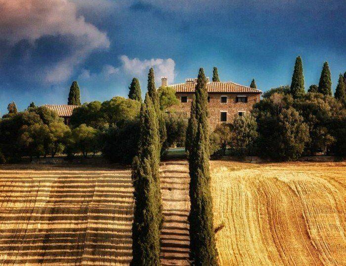 les champs de blé en Italie, les villas italiennes