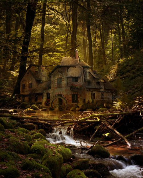 Old Mill, Black Forest, Germany. love how it looks like an old school fairy tale.
