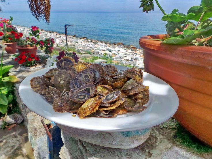 Spicy Meditteranian limpets with vegies and chilli