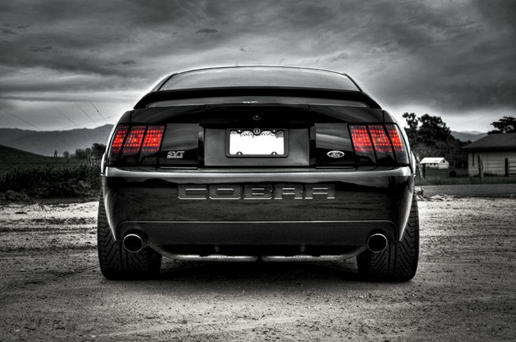 2003 Mustang Cobra SVT Terminator                                                                                                                                                                                 More