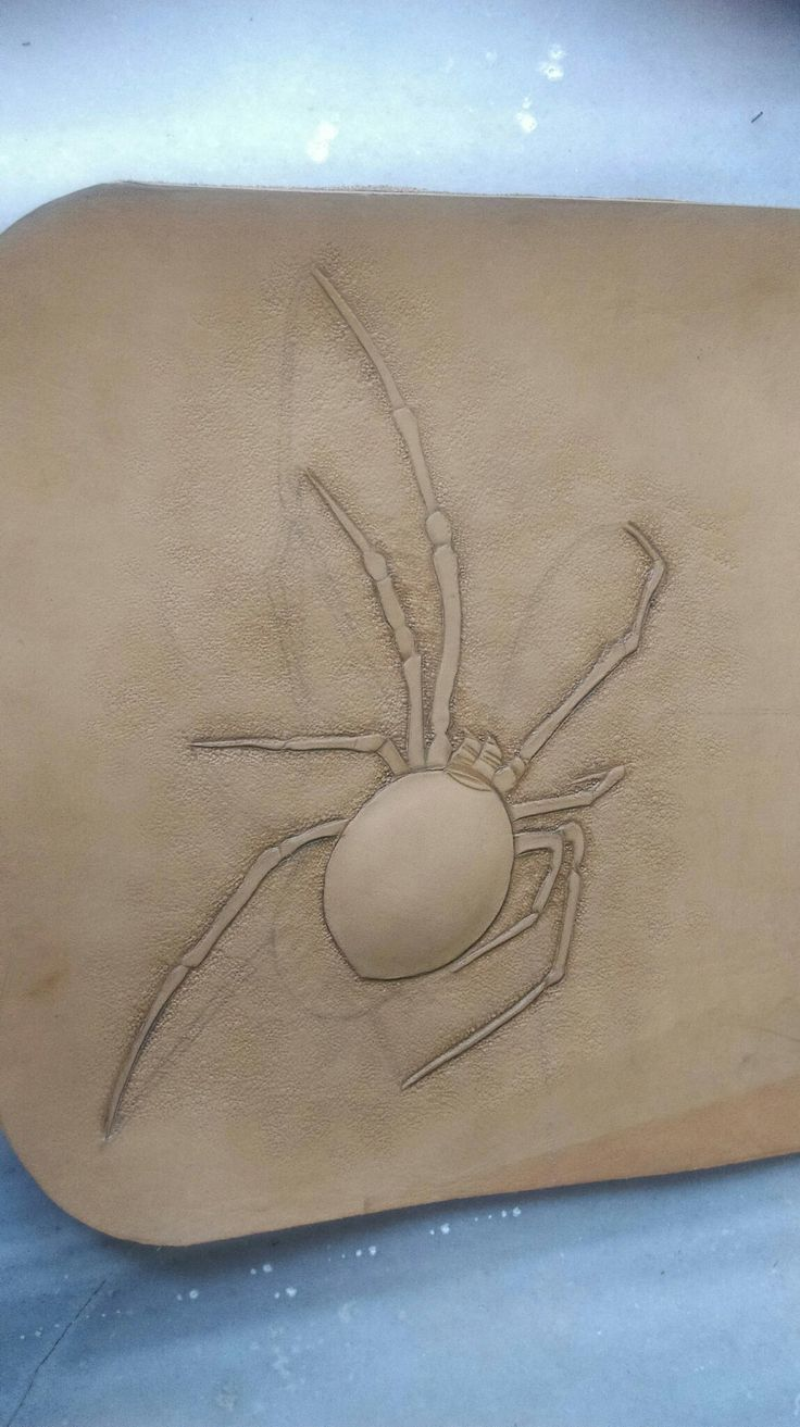 Leather carving spider