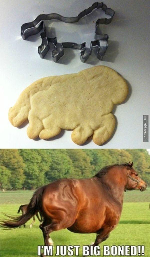 cow horse!