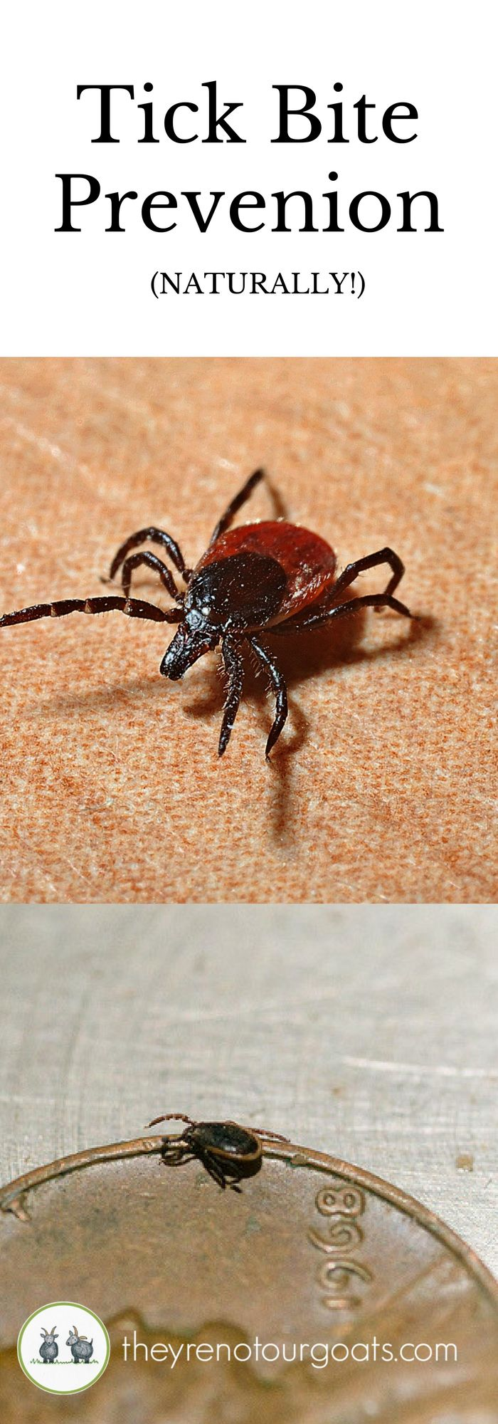 Take five minutes to learn simple, chemical-free ways to avoid tick bites this season.