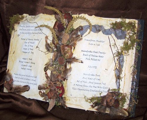 WITCH SPELLBOOK Primitive Halloween Fall Autumn Harvest by Oddsurd, $24.00Halloween Witches, Book Of Shadows, Halloween Decor, Spell Books, Autumn Decor, Fall Autumn, Autumn Harvest, Spelling Book, Altered Book