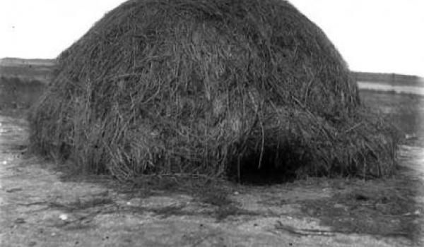 A grass-clad dome from the coastal plains of the southern Gulf of Carpentaria, designed for both wet-season use (Dec to Mar) and mosquito protection. The purpose of the small entrance is ease of sealing, once the occupants are inside. The photo was taken near Normanton in the period 1893-1910. (Photograph: Roth.)
