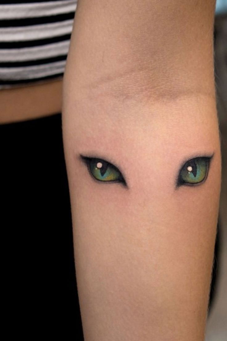 As mais lindas tatuagens de gatos – Tattoos