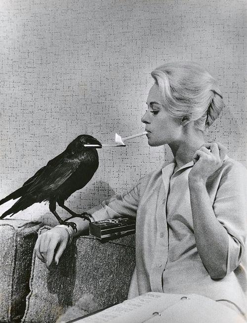 """kafkasapartment: """" Tippi Hedren, 1962. Philippe Halsman. Gelatin silver print """""""