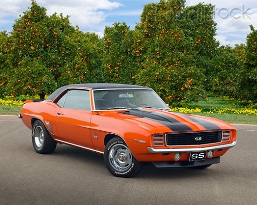 1969 Chevrolet Camaro RS/SS Hugger Orange With Black Stripes 3/4 Front View On Pavement By Orange Trees