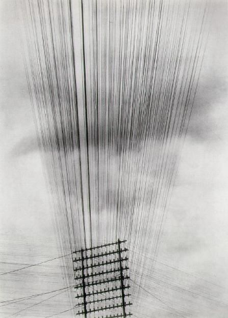 Photagrapher Tina Modotti, Telephone Wires, 1925