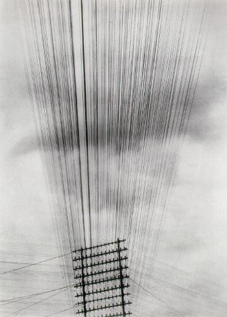 Photagrapher Tina Modotti, Telephone Wires, 1925