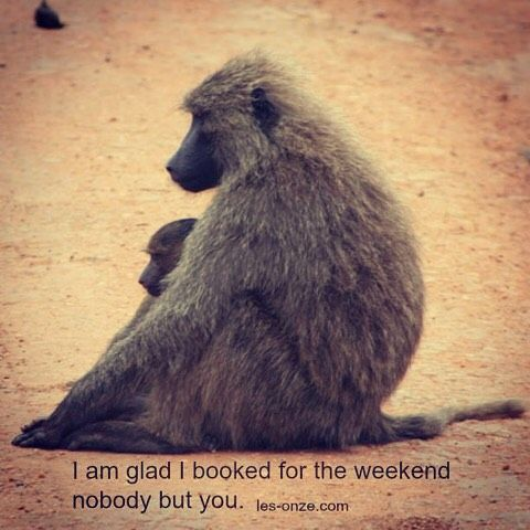 I am glad I booked for the weekend nobody but you. / www.les-onze.com, Marriage and Couples Counselling /