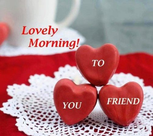 Good Morning Friends Morning Quotes Lovely Morning to You Friends