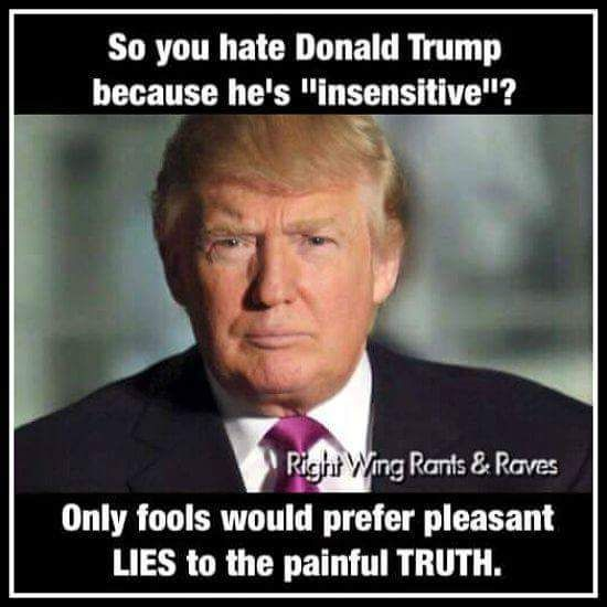THE TRUTH SOUNDS LIKE HATE TO THOSE WHO HATE THE TRUTH! #TrumpLandslide2016 #DonaldTrumpBythePeopleFor thePeople