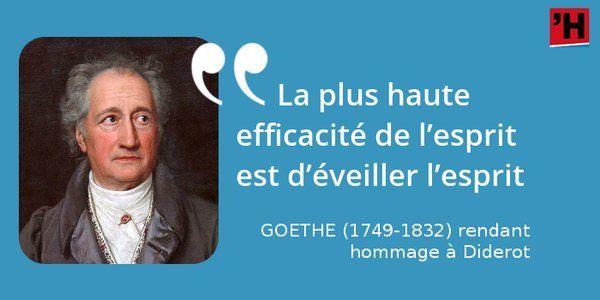 Ce mot du génie allemand sur #Diderot s'applique à Diderot #citation #histoire #culture