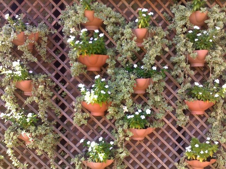trelica de madeira para jardim vertical ? Doitri.com