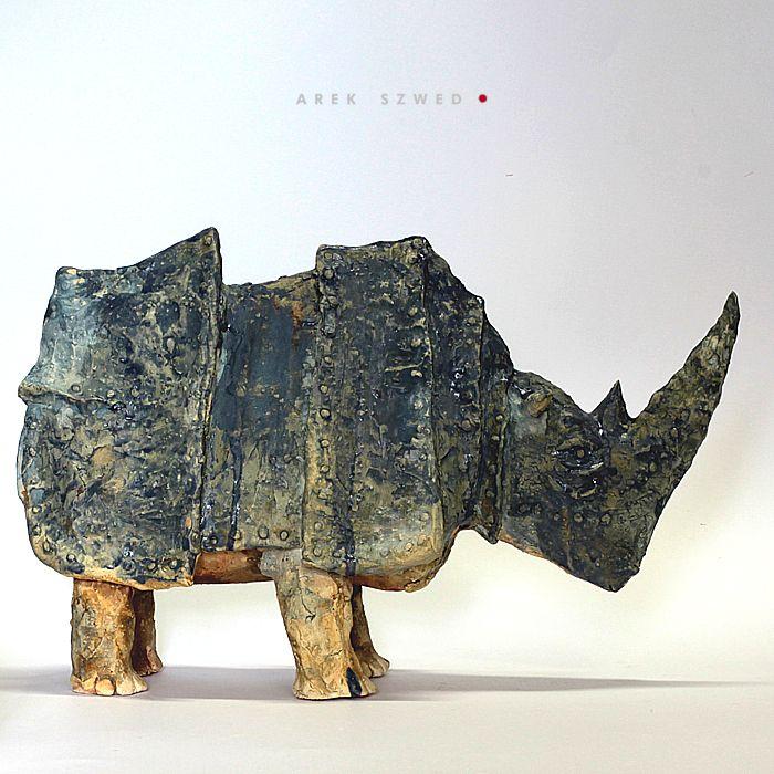 Blue Rhino by Arek Szwed