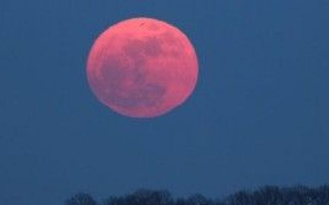 """Nuovo appuntamento per il 2 giugno con la """"luna rosa"""" Occhi all'insù per ammirare il nuovo appuntamento estivo del fenomeno astronomico della luna rosa, previsto per il 2 giugno.Il 2 giugno, infatti, la luna sarà piena e più luminosa del solito, si trov #lunarosa"""