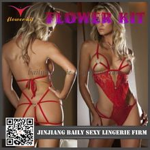 2014 Hot Sale Purple Sexy Lingerie LACE MESH OPEN BUST BRA TEDDY Sexy Teddy Lingerie  Best Buy follow this link http://shopingayo.space