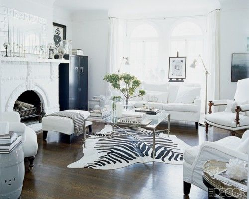 Living Room Ideas Zebra best 20+ zebra rugs ideas on pinterest | zebra living room, zebra