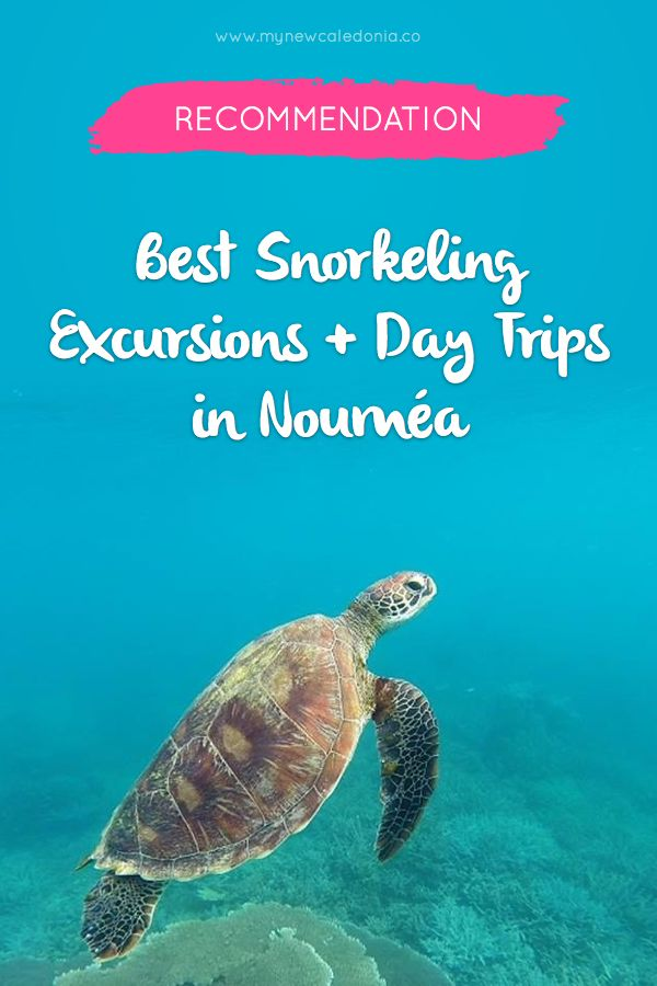 A list of the best snorkeling and day trips in Noumea, New Caledonia.