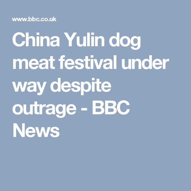 China Yulin dog meat festival under way despite outrage - BBC News