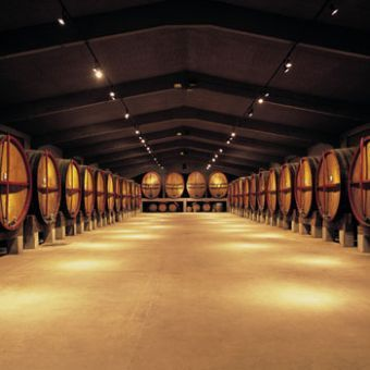 Abadal-wine tourism, wine tours and activities
